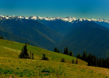 Hurricane Ridge View 2010 by JMGatlin